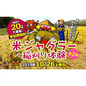 第2期米ジャグラープロジェクト稲刈り体験参加者大募集!